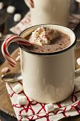 picture of peppermint  - Homemade Peppermint Hot Chocolate with Whipped Cream - JPG