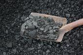 foto of power-shovel  - Loading shovel coal in the mine nature - JPG