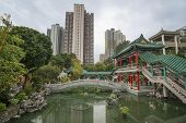 picture of hong kong bridge  - Traditional chinese garden park in Hong Kong with pool and with high rise around - JPG