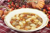 pic of stew  - A delicous bowl of homemade beef stew surrounded by harvest fall decorations closeup with focus on stew - JPG
