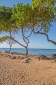 stock photo of waikiki  - Early morning at Rockpile beach in Waikiki with sand - JPG