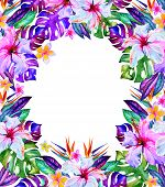 image of hawaiian flower  - beautiful romantic floral frame with place for text - JPG