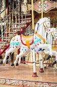picture of carousel horse  - Attraction horse a show for in children - JPG