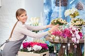 picture of flower shop  - Each bouquet is gorgeous - JPG
