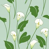 image of calla  - Seamless pattern with white calla lily flowers and green leaves - JPG