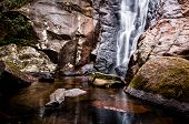 foto of rainforest  - Small Waterfall in Tropical Rainforest in an Island in Brazil - JPG