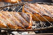 picture of salmon steak  - Grilled salmon steaks on the grill  - JPG
