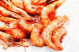 pic of shrimp  - Shrimp cocktail background over white Ice on a market stall close up - JPG