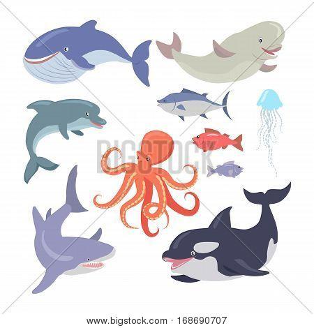 Sea life creatures