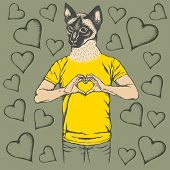 Cat Valentine day vector concept. Illustration of cat head on human body. Siam cat showing heart sha poster