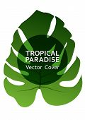 Tropical Paradise Leaf Vector Cover Layout. Cool Floral A4 Page Design. Exotic Tropic Plant Leaf Vec poster