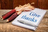 give thanks phrase - handwriting in an art sketchbook with a decorative corn against rustic barn woo poster