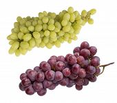 Pink And Green Grapes Isolated On White Background. Top View. Bunch Of Pink Grape And Green Grapes K poster