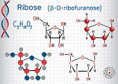 Ribose (β-d-ribofuranose) Molecule, It Is A Pentose Monosaccharide (simple Sugar), It Forms Part Of  poster