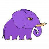 Elephant. Vector Of Cartoon Elephant. Hand Drawn Cute Elephant. poster