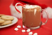 Hot Chocolate. Hot Chocolate with mini marshmallows for Christmas Holiday Concepts. Winter Holiday S poster