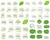 Vegan Friendly Collection Label And High Quality Product Badges. Bio Home Made Food Organic Product  poster