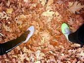 Top View Of Runner Two People Feet Standing On The Fallen Leaves In The Autumn Forest Road, Exercise poster