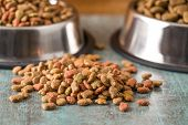 Dry pet food. Dry kibble food on old table. poster