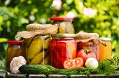 stock photo of pickled vegetables  - Jars of pickled vegetables in the garden. Marinated food