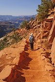 picture of hades  - Hiker Hading down the South Kaibab trail in the Grand Canyon - JPG