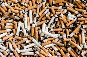 stock photo of stinky  - a lot of burnt cigarette butts with some ash - JPG