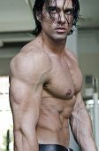 picture of hunk  - Profile view of torso and face of muscular man shirtless - JPG