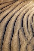 picture of papagayo  - texture abstract of a dry sand and the beach lanzarote spain - JPG