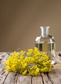 image of cruciferous  - Rape flower on wooden table - JPG