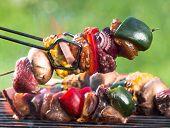 picture of braai  - Tasty skewers on garden grill - JPG