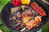 stock photo of braai  - Tasty skewers on garden grill - JPG