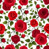 stock photo of english rose  - Vector seamless pattern with red roses and green leaves on a white background - JPG