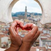 picture of old stone fence  - views over the rooftops of Florence through the fence with ornament on bell tower in Florence and palm heart - JPG