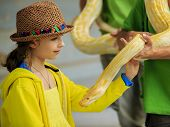 picture of zoo  - Trip to the Zoo  - JPG
