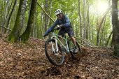 stock photo of exercise bike  - Rider in action at Freestyle Mountain Bike Session - JPG
