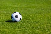 image of football pitch  - Black and white soccer ball on green soccer pitch - JPG