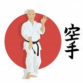stock photo of karate  - The man shows karate an illustration - JPG