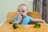stock photo of teething baby  - Cute baby eating a piece of broccoli - JPG