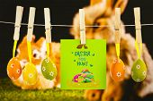 picture of taxidermy  - easter egg hunt graphic against ginger bunny rabbit - JPG