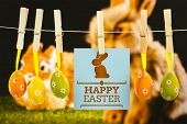 image of taxidermy  - happy easter graphic against ginger bunny rabbit - JPG