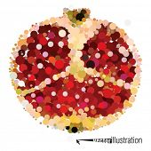 image of transverse  - Vector cutout pomegranate consists of circles - JPG