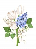 foto of white lily  - Vector bouquet of white tulips - JPG