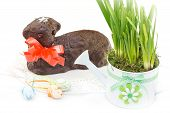 picture of spring lambs  - Czech Easter  - JPG