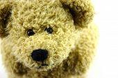 stock photo of teddy-bear  - Brown cute teddy bear closeup separated white - JPG