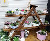 foto of english cottage garden  - pretty garden features in an english cottage garden - JPG