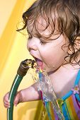 image of drinking water  - a toddler drinking water from a garden hose - JPG