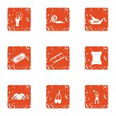 Dancer Icons Set. Grunge Set Of 9 Dancer Icons For Web Isolated On White Background poster