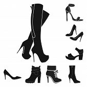 Isolated Object Of Heel And High Symbol. Collection Of Heel And Stiletto Stock Vector Illustration. poster