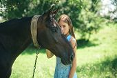 The Gift Of Friendship. Pretty Girl At Horse Ranch. Adorable Horse Owner With Her Pet. Making Friend poster