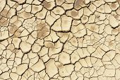 image of water shortage  - Detail of a cracked dry soil in water shortage time - JPG
